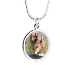 An Aussie Shepherd Stunner! Silver Round Necklace