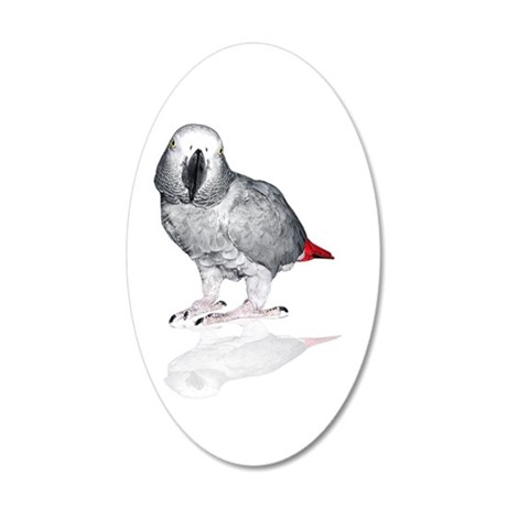 African Grey Parrot Wall Decal