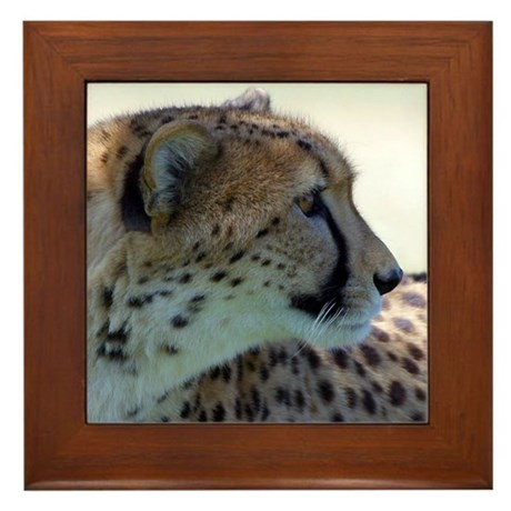 Cheeta Framed Tile