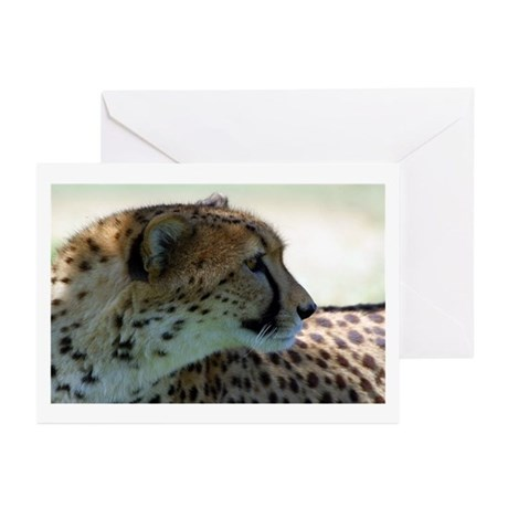 Cheeta Greeting Cards (Pk of 10)