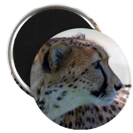 "Cheeta 2.25"" Magnet (10 pack)"