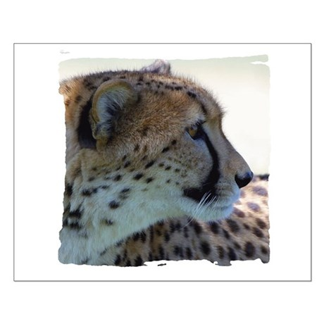 Cheeta Small Poster
