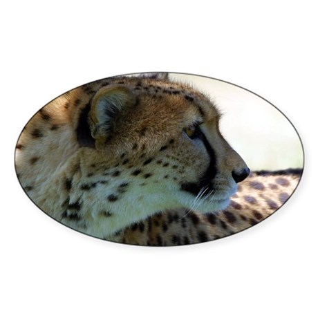 Cheeta Oval Sticker