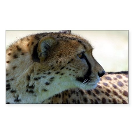Cheeta Rectangle Sticker