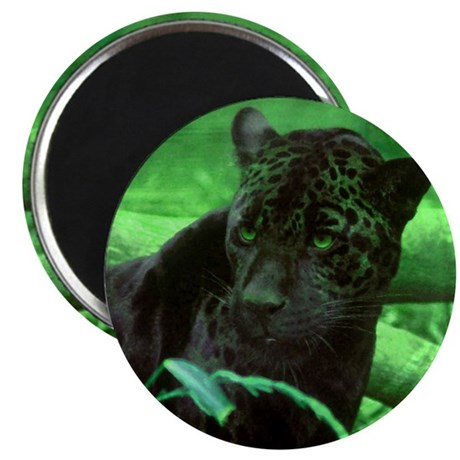 "Black Jaguar 2.25"" Magnet (10 pack)"