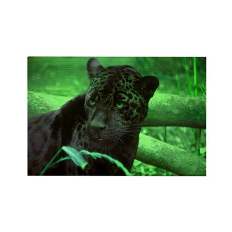 Black Jaguar Rectangle Magnet