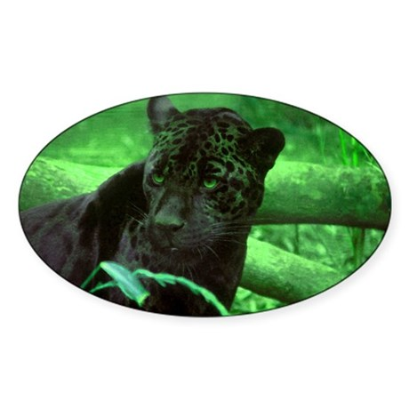 Black Jaguar Oval Sticker