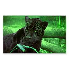 Black Jaguar Rectangle Decal