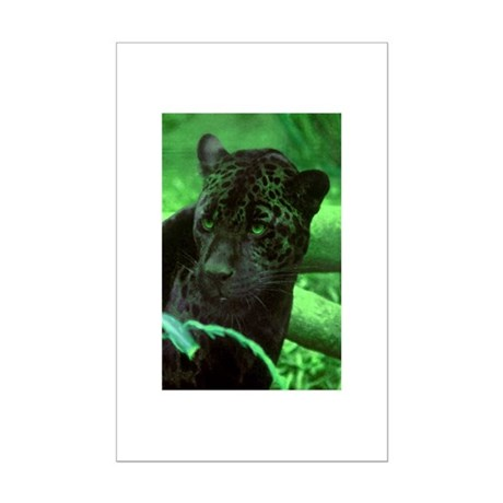 Black Jaguar Mini Poster Print