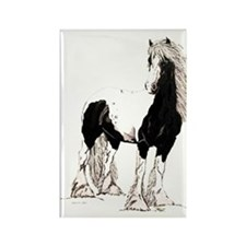 Gypsy Cob Rectangle Magnet