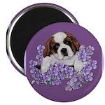 St. Bernard Puppy with flower Magnet