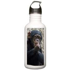 Chimpanzee002 Sports Water Bottle
