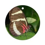Butterfly pic Ornament (Round)