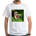 Butterfly pic White T-Shirt