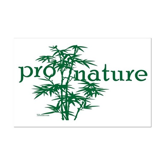 Pro Nature Graphic Mini Poster Print