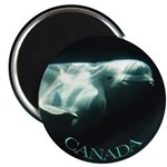 Canada Souvenir Beluga Whale Fridge Magnet