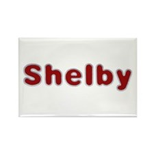 Shelby Santa Fur Rectangle Magnet 10 Pack