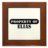 Property of Elias Framed Tile
