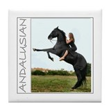 Black Andalusian Tile Coaster