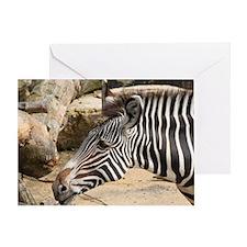 Zebra003 Greeting Card