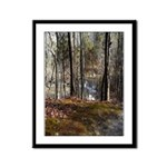 Autumn Mill Stream Framed Panel Print