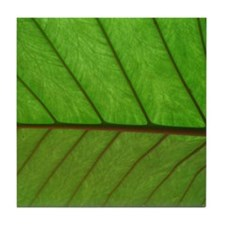 Green Leaf Tile Coaster