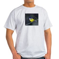 Yellow Robin Ash Grey T-Shirt
