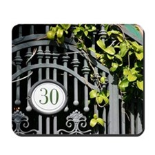 Door 30 Mousepad