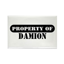 Property of Damion Rectangle Magnet
