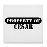 Property of Cesar Tile Coaster