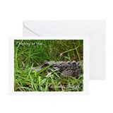 Fisheating Creek -Gator Lurki Greeting Cards