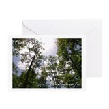 Fisheating Creek -Treetops Greeting Cards