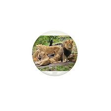 LION FAMILY Mini Button