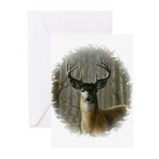 WHITE TAILED BUCK Greeting Cards (Pk of 10)