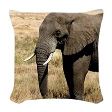 African Bush Elephant moving to success a Woven Th
