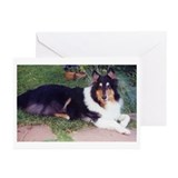 MacDougle Greeting Cards (Pk of 10)