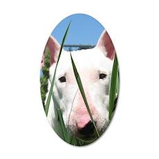 Cute English Bull Terrier Hi 35x21 Oval Wall Decal