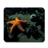 'Reach for the stars' Mousepad