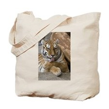 Cute Carnivorous animal predators Tote Bag