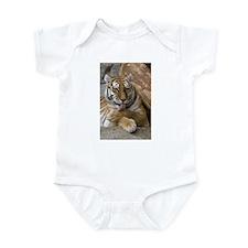 Cool Tigers Infant Bodysuit