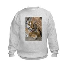Cute Bengal tigers Sweatshirt