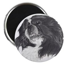 "Unique White pekingese 2.25"" Magnet (10 pack)"
