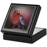 Pretty Galah on Keepsake Box