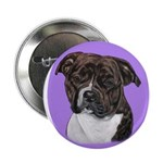 American Staffordshire Button