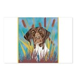 German Shorthair Pointer Postcards (Package of 8)