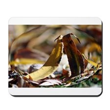 Magnified Leaves Mousepad