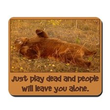 Play Dead Bear Mousepad