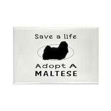Adopt A Maltese Dog Rectangle Magnet