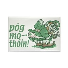 Pog Mo Thoin Irish Rectangle Magnet