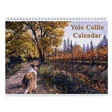 Yolo Collies Calendar -- 2006-2007 happy tails